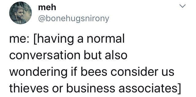 Text - meh @bonehugsnirony me: [having a normal conversation but also wondering if bees consider us thieves or business associates]