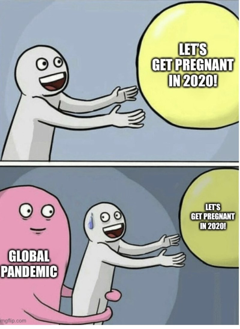 Cartoon - LETS GET PREGNANT IN 2020! LET'S GET PREGNANT IN 2020! GLOBAL PANDEMIC imgflip.com