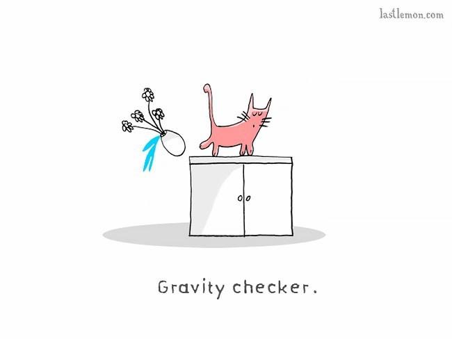 Diagram - lastlemon.com 00 Gravity checker.