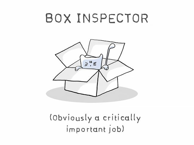 Text - BOX INSPECTOR (obviously a critically important job)