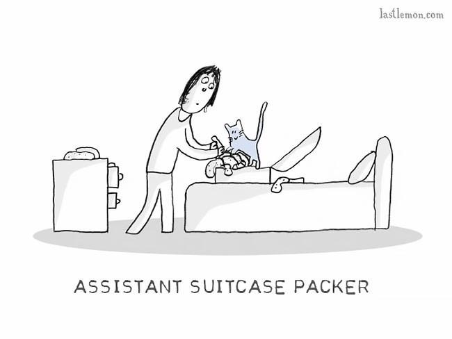 Cartoon - lastlemon.com ASSISTANT SUITCASE PACKER