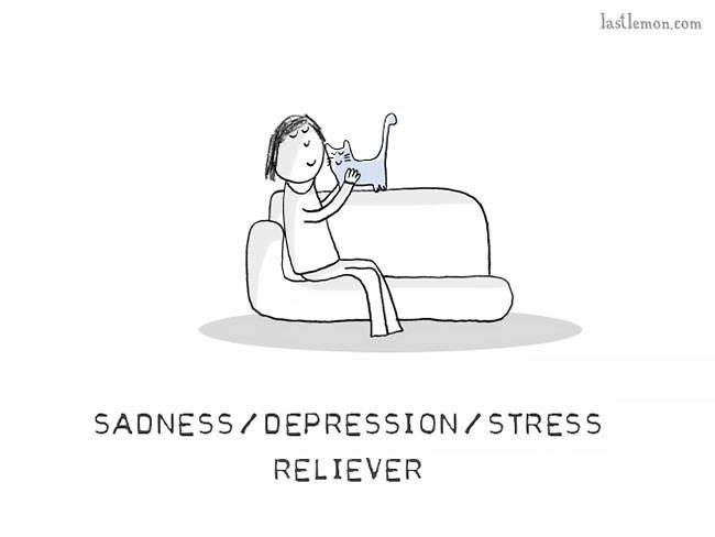 Text - lastlemon.com SADNESS/DEPRESSION/STRESS RELIEVER