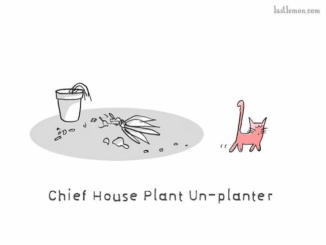 Illustration - lastlemon.com Chief House Plant Un-planter