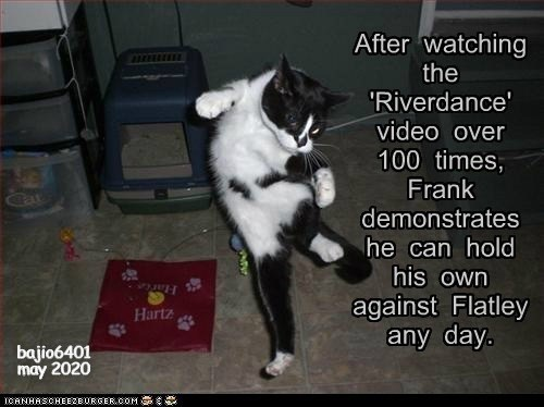 Cat - After watching the 'Riverdance' video over 100 times, Frank Cat demonstrates he can hold his own Harte against Flatley any day. Hartz bajio6401 may 2020 ICANHASCHEEZBURGER.COM