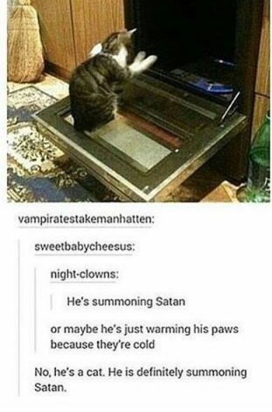 Furniture - vampiratestakemanhatten: sweetbabycheesus: night-clowns: He's summoning Satan or maybe he's just warming his paws because they're cold No, he's a cat. He is definitely summoning Satan.