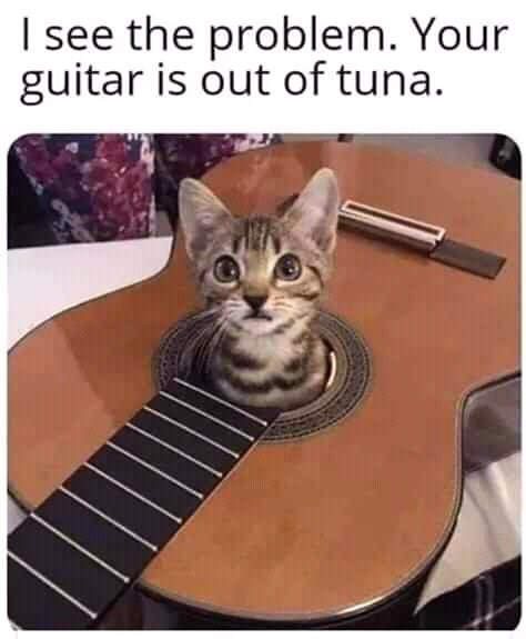Cat - I see the problem. Your guitar is out of tuna.