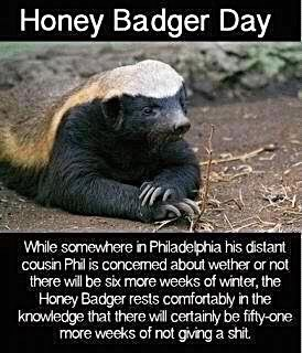 Photo caption - Honey Badger Day While somewhere in Philadelphia his distant cousin Phil is concemed about wether or not there will be six more weeks of winter, the Honey Badger rests comfortably in the knowledge that there will certainly be fifty-one more weeks of not giving a shit.