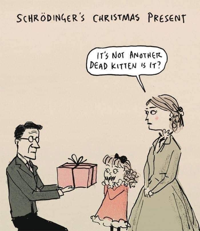 Cartoon - SCHRÖDINGER'S CHRISTMAS PRESENT IT'S NOT ANOTHER DEAD KITTEN IS IT?