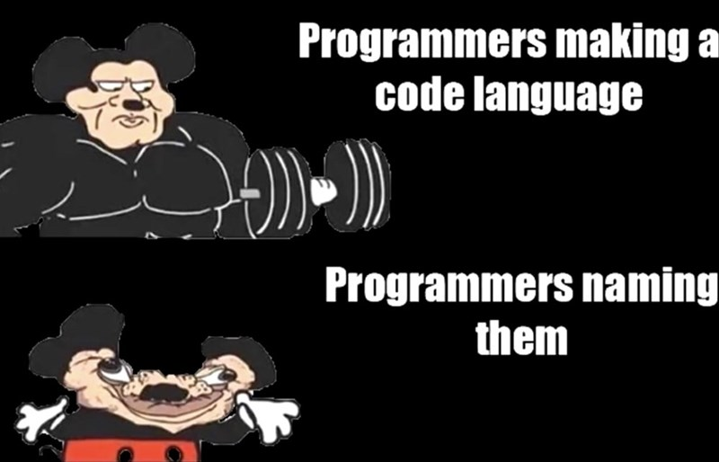 Cartoon - Programmers making a code language Programmers naming them