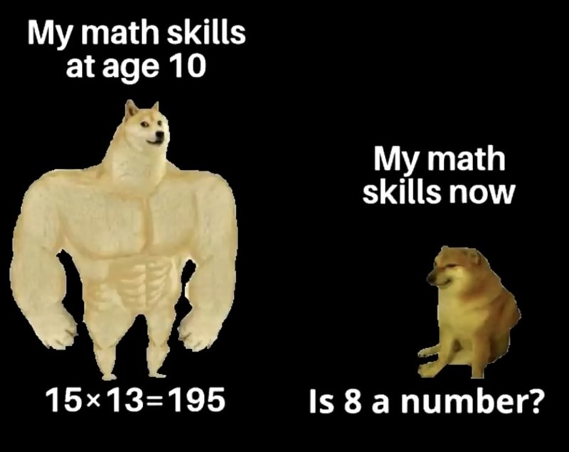 Text - My math skills at age 10 My math skills now 15×13=195 Is 8 a number?