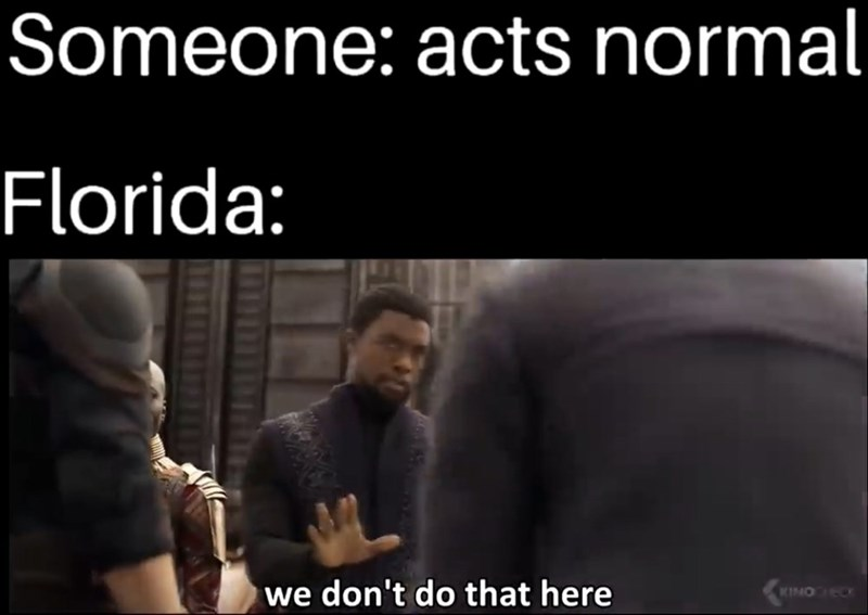 Text - Someone: acts normal Florida: we don't do that here KINO ECK 116