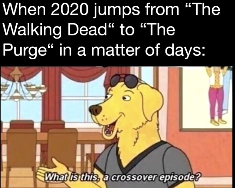 "Animated cartoon - When 2020 jumps from ""The Walking Dead"" to ""The Purge"" in a matter of days: What is this, a crossover episode?"