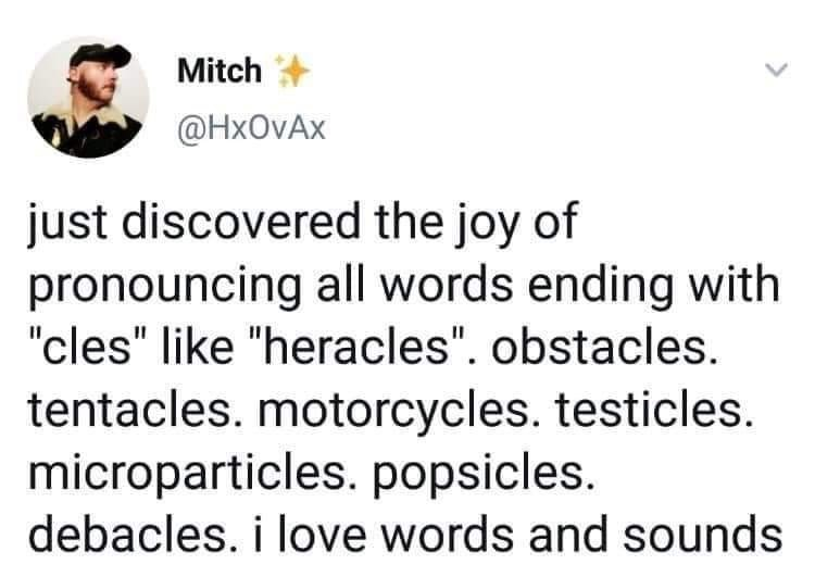 "Text - Mitch @HxOvAx just discovered the joy of pronouncing all words ending with ""cles"" like ""heracles"". obstacles. tentacles. motorcycles. testicles. microparticles. popsicles. debacles. i love words and sounds"
