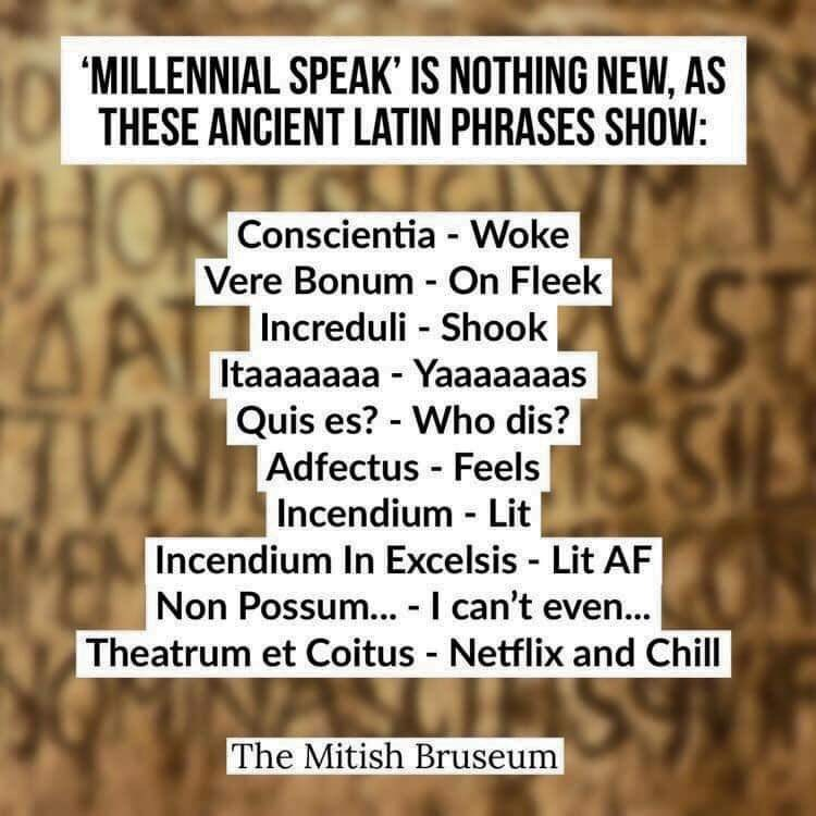 "Text - ""MILLENNIAL SPEAK' IS NOTHING NEW, AS THESE ANCIENT LATIN PHRASES SHOW: 10 HORT AT Conscientia - Woke VST SIL Vere Bonum - On Fleek Increduli - Shook Itaaaaaaa - Yaaaaaaas Quis es? - Who dis? Adfectus - Feels Incendium - Lit Incendium In Excelsis - Lit AF Non Possum... - I can't even... Theatrum et Coitus Netflix and Chill The Mitish Bruseum"