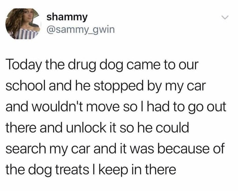 Text - shammy @sammy_gwin Today the drug dog came to our school and he stopped by my car and wouldn't move so l had to go out there and unlock it so he could search my car and it was because of the dog treats I keep in there >