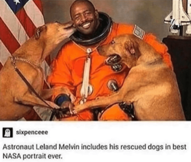 Human - A sixpencece Astronaut Leland Melvin includes his rescued dogs in best NASA portrait ever.