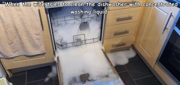 "Property - ""When the wife tries to clean the dishwasher with concentrated washing liquid"""