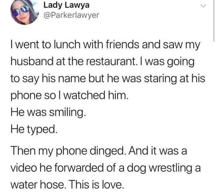 Text - Lady Lawya @Parkerlawyer I went to lunch with friends and saw my husband at the restaurant. I was going to say his name but he was staring at his phone so I watched him. He was smiling. He typed. Then my phone dinged. And it was a video he forwarded of a dog wrestling a water hose. This is love.