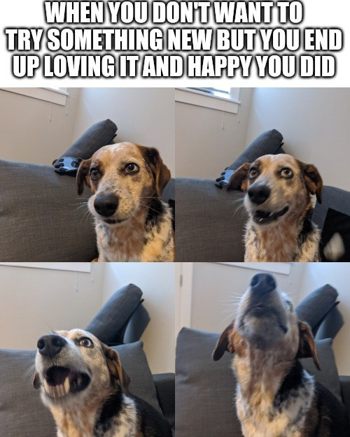 Dog - WHEN YOU DONTWANTTO TRYSOMETHING NEW BUT YOU END UP LOVING ITAND HAPPY YOU DID