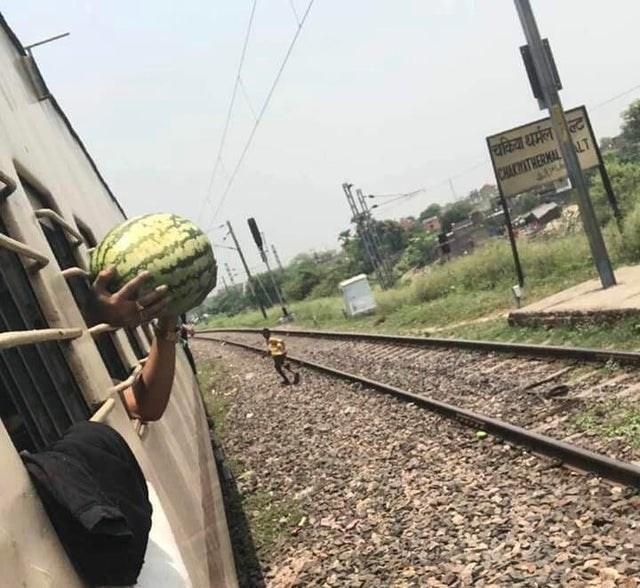 Transport - चकिया थर्मल ल्ट CHAKATHERMAL LT
