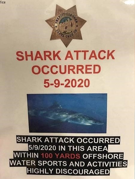Poster - fice CORONER SANTA CRUZ SHARK ATTACK OCCURRED 5-9-2020 SHARK ATTACK OCCURRED 5/9/2020 IN THIS AREA WITHIN 100 YARDS OFFSHORE WATER SPORTS AND ACTIVITIES HIGHLY DISCOURAGED SHERIF