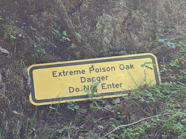 Motor vehicle - Extreme Poison Oak Danger Do N Enter