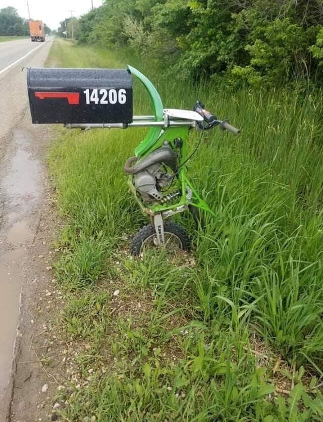 Grass - 14206 Kawsk