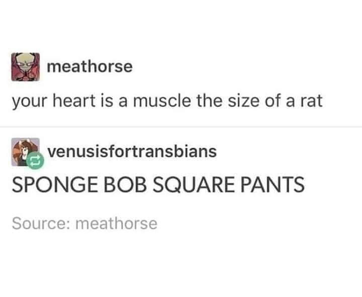 Text - meathorse your heart is a muscle the size of a rat venusisfortransbians SPONGE BOB SQUARE PANTS Source: meathorse