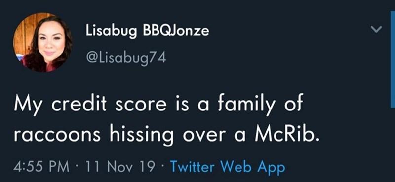 Text - Lisabug BBQJonze @Lisabug74 My credit score is a family of raccoons hissing over a McRib. 4:55 PM · 11 Nov 19 · Twitter Web App