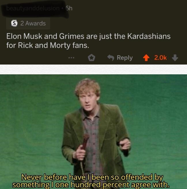 "Funny meme that reads, ""Elon Musk and Grimes are just Kardashians for Rick and Morty fans"" above a still of a comedian saying, ""Never before have I been so offended by something I one hundred percent agree with"""