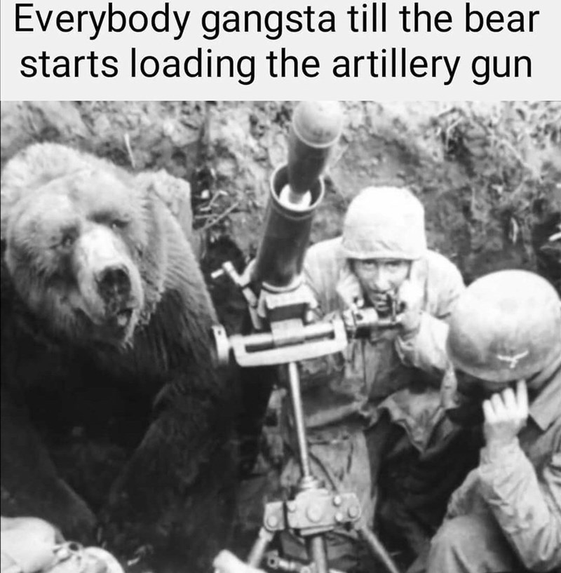 everybody gangster meme with a bear near an artillery gun and soldiers
