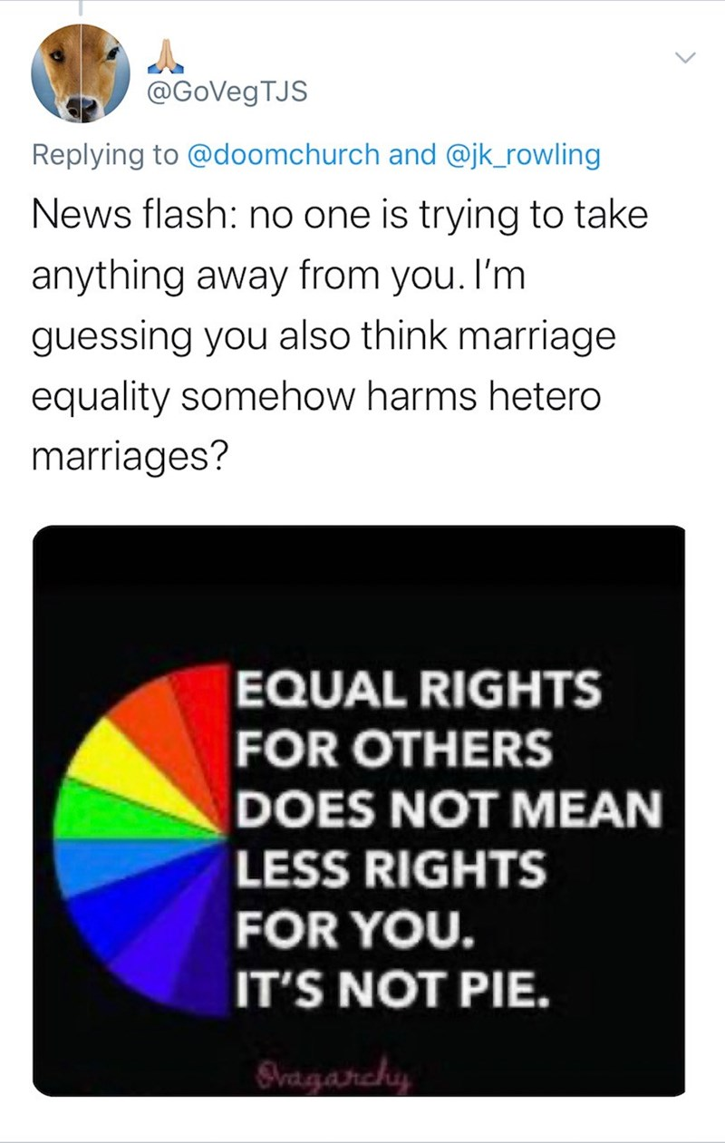 Text - @GoVegTJS Replying to @doomchurch and @jk_rowling News flash: no one is trying to take anything away from you. I'm guessing you also think marriage equality somehow harms hetero marriages? EQUAL RIGHTS FOR OTHERS DOES NOT MEAN LESS RIGHTS FOR YOU. IT'S NOT PIE. Svagarchy