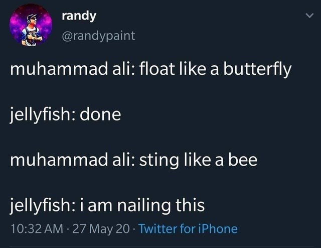 jellyfish and muhammad ali meet and talk about floating like a butterfly meme