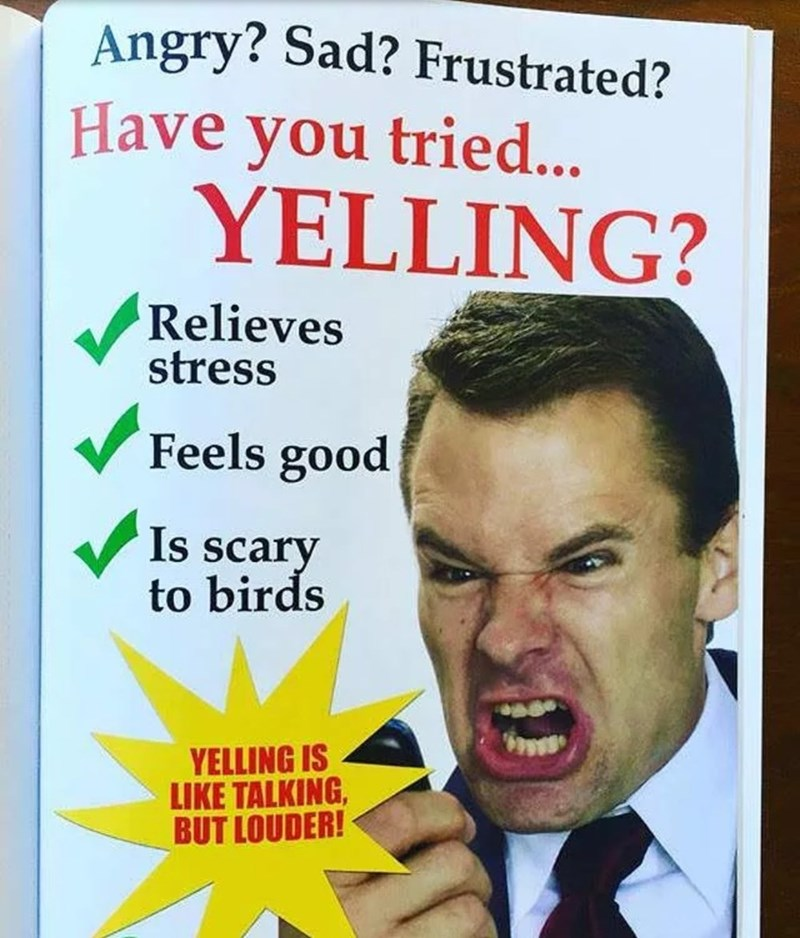 Text - Angry? Sad? Frustrated? Have you tried... YELLING? Relieves stress V Feels good Is scary to birds YELLING IS LIKE TALKING, BUT LOUDER!
