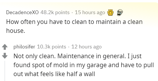 Text - DecadenceXO 48.2k points 15 hours ago How often you have to clean to maintain a clean house. philosifer 10.3k points · 12 hours ago Not only clean. Maintenance in general. I just found spot of mold in my garage and have to pull out what feels like half a wall