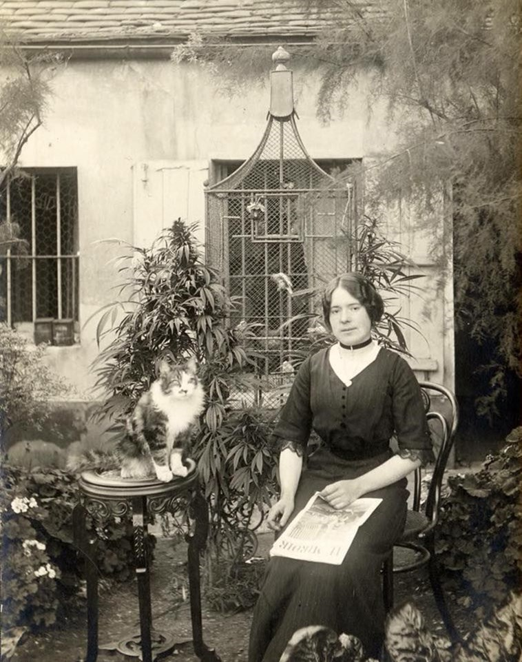black and white vintage photo of a woman in old fashioned clothes and a cat sitting in a garden of cannabis plants