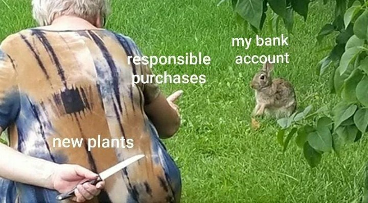 Wildlife - responsible purchases my bank account new plants