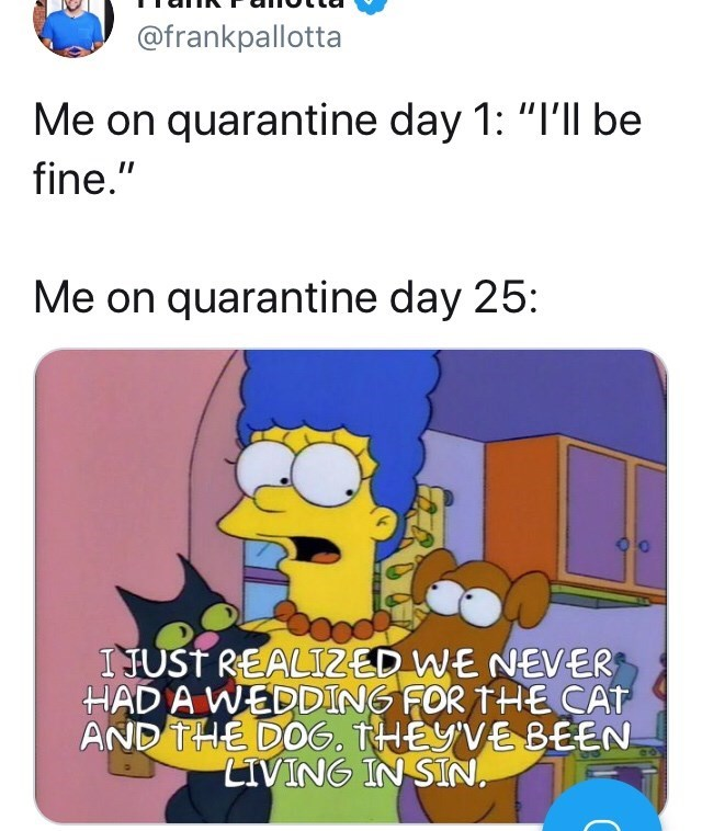 """Text - @frankpallotta Me on quarantine day 1: """"I'll be fine."""" Me on quarantine day 25: I JUSŤ REALIZED WE NEVER HAD A WEDDING FOR THE CAT AND THE DOG. THEYVE BEEN LIVING IN SIN,"""