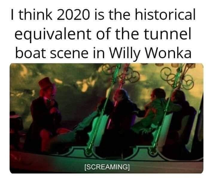 Text - I think 2020 is the historical equivalent of the tunnel boat scene in Willy Wonka [SCREAMING]