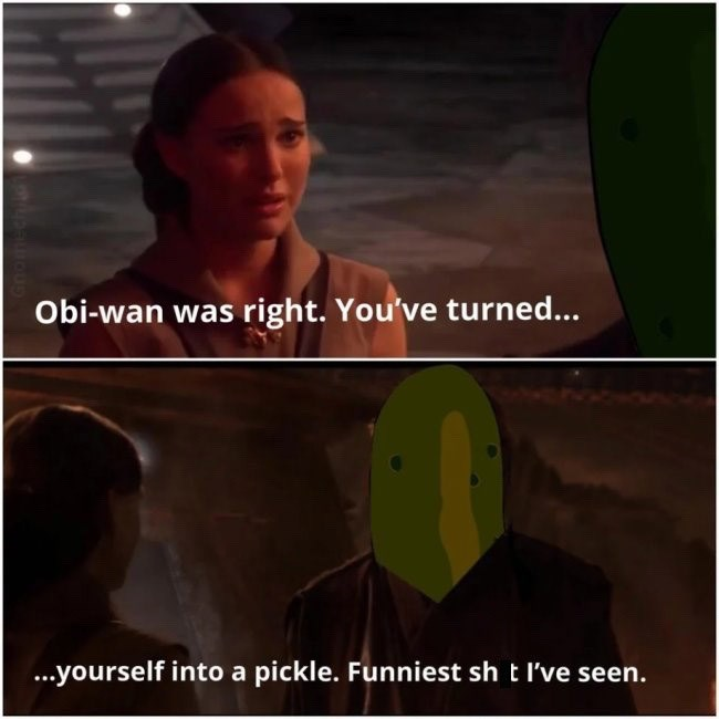 "Funny Star Wars prequel meme featuring Padme telling Anakin, ""Obi-Wan was right, you've turned...yourself into a pickle. Funniest shit I've ever seen"""