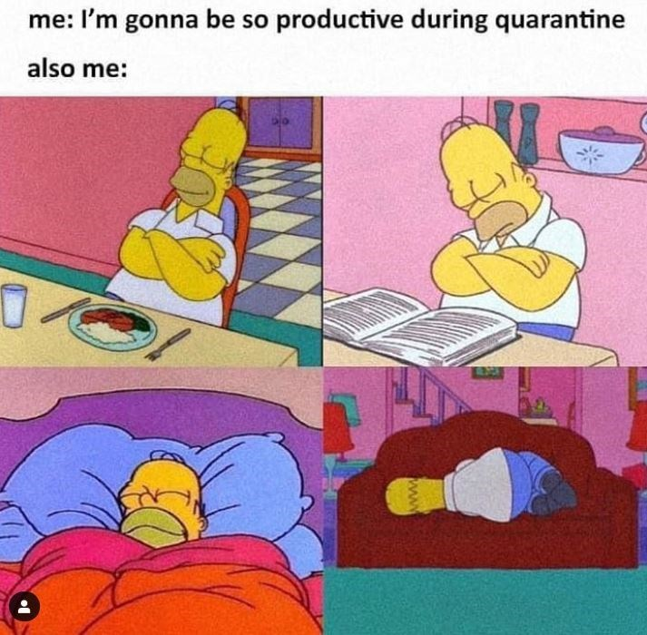 Cartoon - me: I'm gonna be so productive during quarantine also me: www