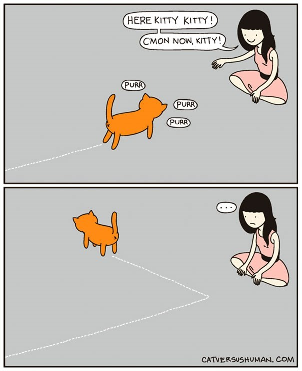 Cartoon - HERE KITTY KITTY! CMON NOW, KITTY! PURR PURR PURR CATVERSUSHUMAN. COM