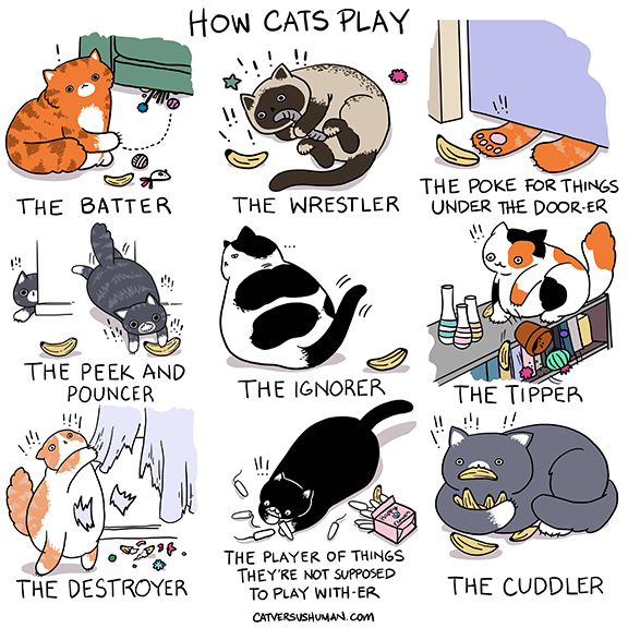 Cartoon - How CATS PLAY THE POKE FOR THINGS UNDER THE DOOR-ER THE BATTER THE WRESTLER THE PEEK AND POUNCER THE IGNORER THE TIPPER THE PLAYER OF THINGS THEY'RE NOT SUPPOSED To PLAY WITH-ER THE DESTROYER THE CUDDLER CATVERSUSHUMAN.com