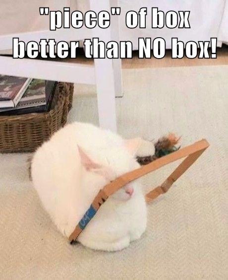 "Floor - ""piece"" of box better than NO box!"