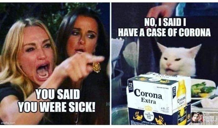 Cat - NO, I SAID I HAVE A CASE OF CORONA 12 Corona YOU SAID YOU WERE SICK! Extra Eai Pacte Photos imgfip oom