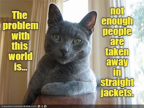 Cat - The problem with this world is. not enough people are taken away in straight jackets. ICANHASCHEEZEURGER.COM