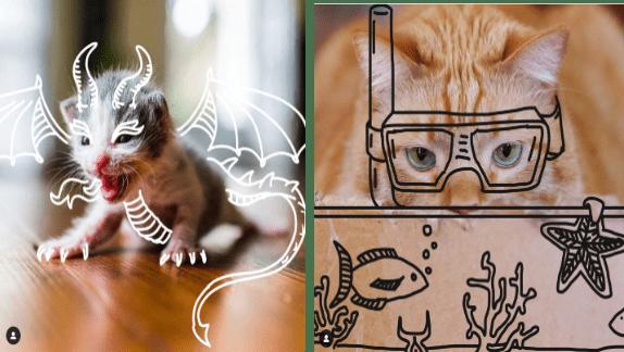 funny doodles cat art funny cats Cats - 9502213