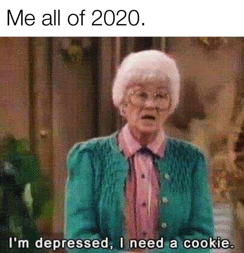 Photo caption - Me all of 2020. I'm depressed, I need a cookie.