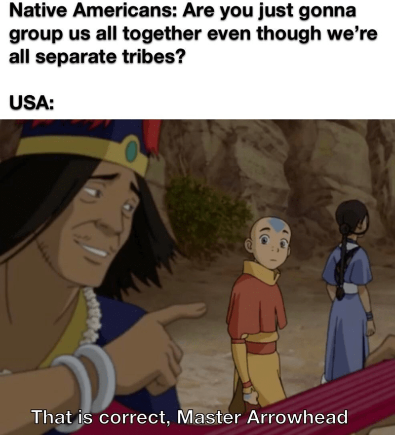 Cartoon - Native Americans: Are you just gonna group us all together even though we're all separate tribes? USA: That is correct, Master Arrowhead