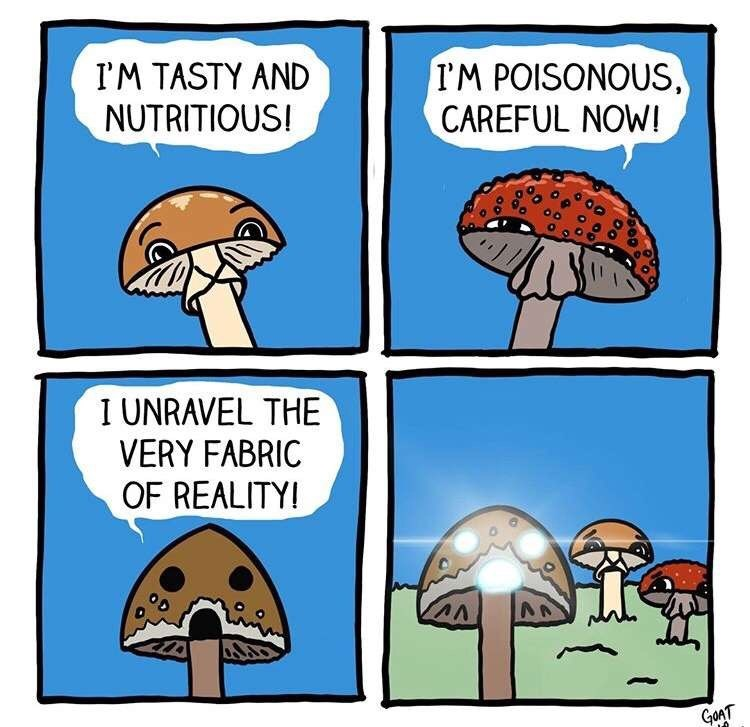 Cartoon - I'M TASTY AND NUTRITIOUS! I'M POISONOUS, CAREFUL NOW! I UNRAVEL THE VERY FABRIC OF REALITY! GonT